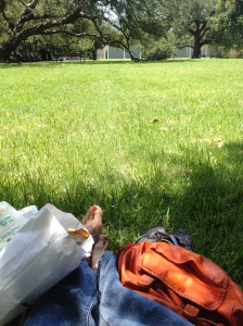 Picnic_at_the_Menil_Museum_Houston