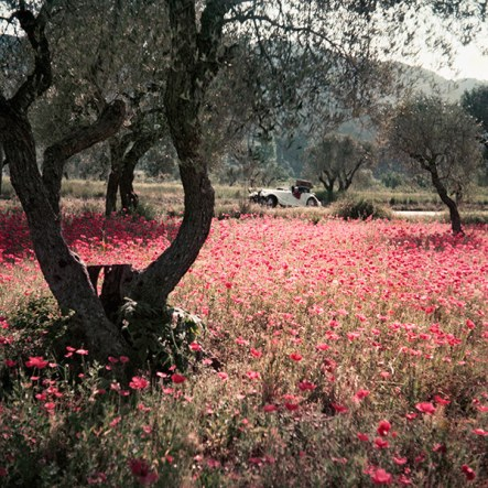 Lartigue in color - Florette dans la Morgan, Provence - dam-images-daily-2015-06-jacques-henri-lartigue-jacques-henri-lartigue-06