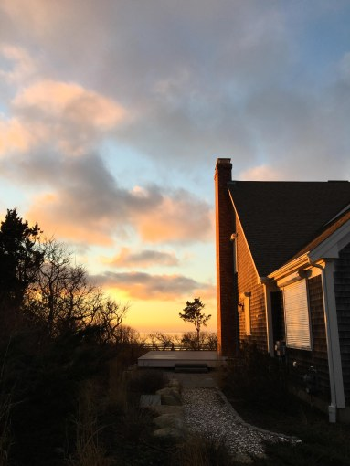 A golden Cape Cod sunset lights up the side of a beach cottage on the cliffs of First Encounter Beach, Massachusetts. The silhouette of a small, elegant tree sits beneath the pinked clouds.